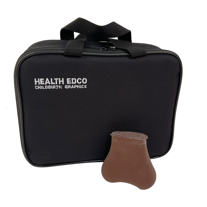 TSE Model Brown (Two Lumps in One Testicle), men's health education testicular self-exam model and case, Health Edco, 26406E