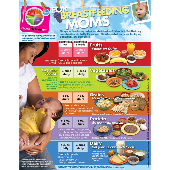 MyPlate for Breastfeeding Moms Tear Pad English front, food groups and portions, Childbirth Graphics, 50322