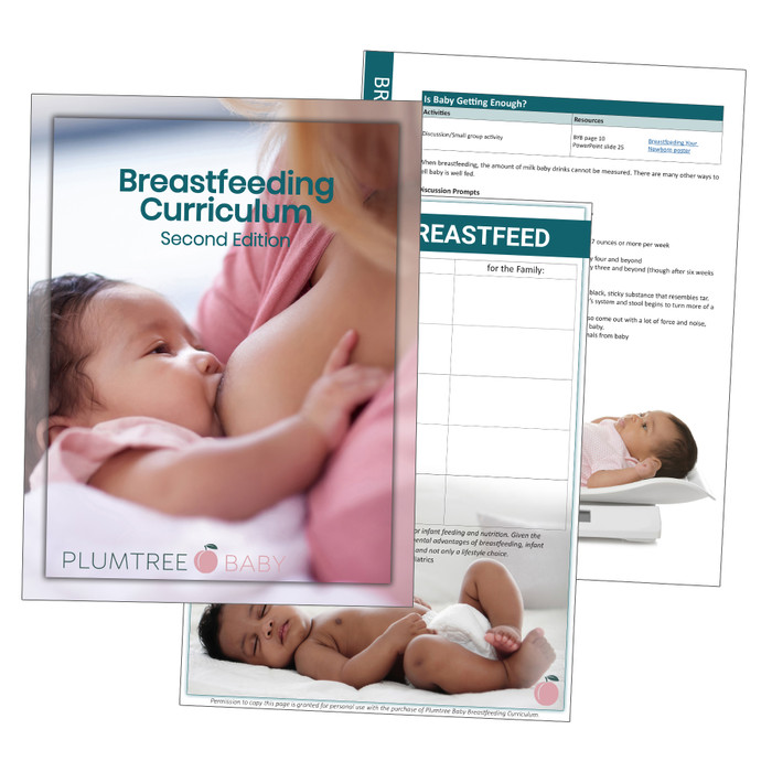 Breastfeeding Curriculum, 2nd Edition, breastfeeding and lactation education teaching materials, Childbirth Graphics, 50490