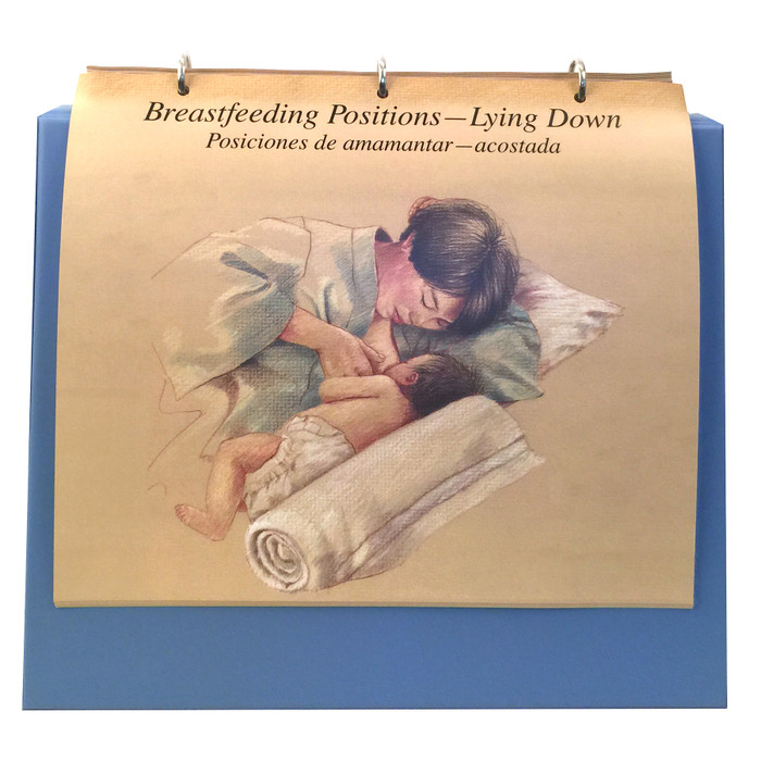 Breastfeeding illustrated Chart Set 3 ring binder breastfeeding position lying down, Childbirth Graphics, 50705