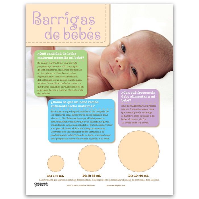 Baby Bellies tear pad for breastfeeding education from Childbirth Graphics showing newborn stomach sizes, Spanish side, 52069
