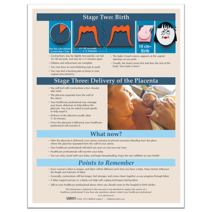 Stages of Labor Tear Pad virtual, digital format for childbirth education instruction by Childbirth Graphics, 52736V