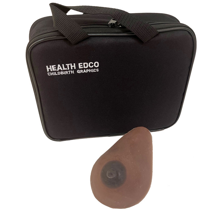 Small Lactating Breast Model in brown skin tone with case, breastfeeding education model, Childbirth Graphics, 78903