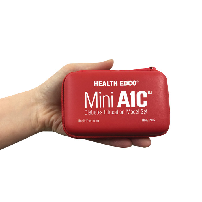Mini A1C Diabetes Education Model Set Case containing test tubes, diabetes education materials and models, Health Edco, 79820