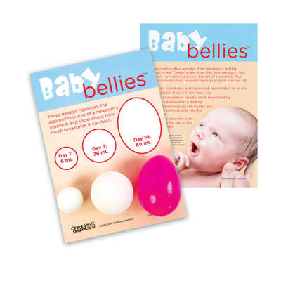 Baby Bellies Newborn Stomach Size Breastfeeding Education Display, childbirth education materials, Childbirth Graphics, 79077