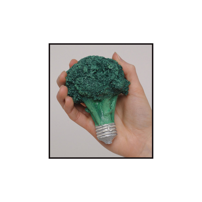Visualize Your Portion Size Nutrition Education Display broccoli / light bulb portion size model, Health Edco, 79204
