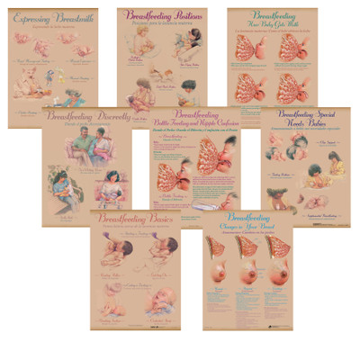 Breastfeeding Chart Set of eight charts for breastfeeding education and teaching lactation from Childbirth Graphics, 90809