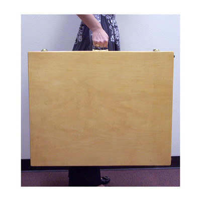 Wooden Case for Plexiglas Display Faux Foods 30 x 24 x 5, large wooden case with handle and drawbolt closure, Health Edco, 96489